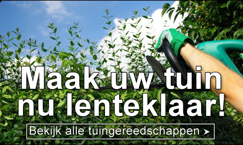 Maak uw tuin nu lenteklaar met tuingereedschap van Sybshop.nl!